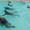 Force Recon Course 2015_011